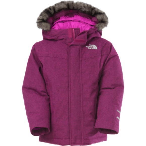 1328d8104 North face Greenland down toddler jacket (2t)